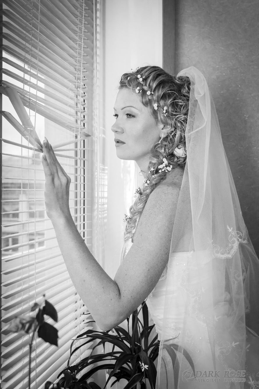 Фото 1769689 в коллекции Мои фотографии - Dark rose - фото и видеосъёмка свадеб