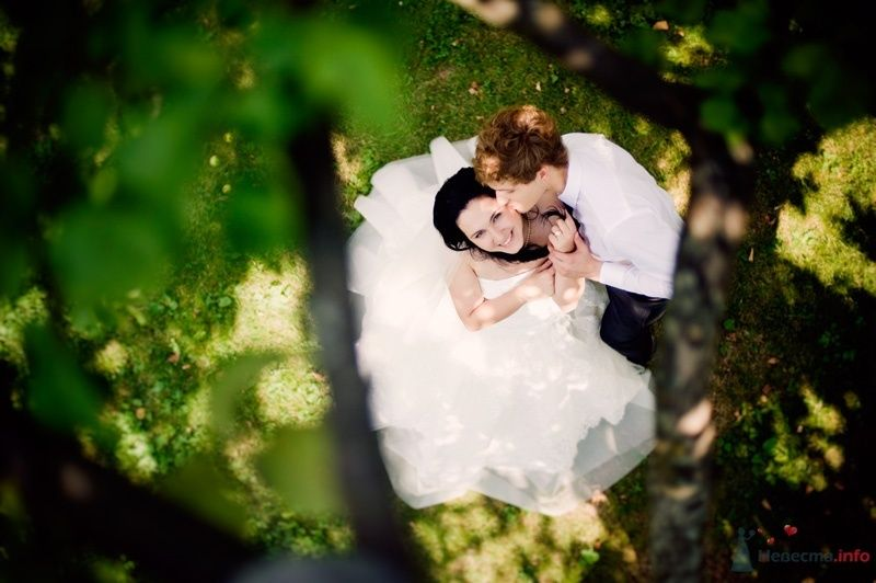 Фото 59297 в коллекции wedding - MashaTsvetkova