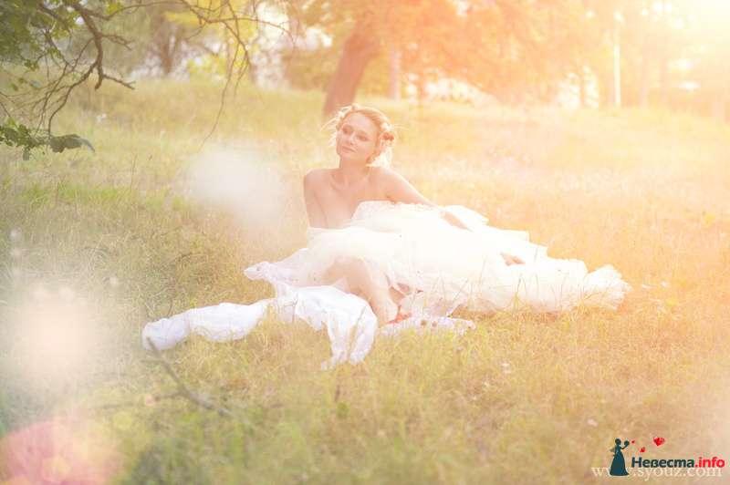 Фото 152795 в коллекции Свадебная фотография - Фотограф Сусанна Мустафаева