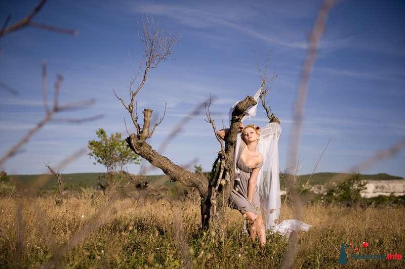 Фото 152808 в коллекции Свадебная фотография - Фотограф Сусанна Мустафаева