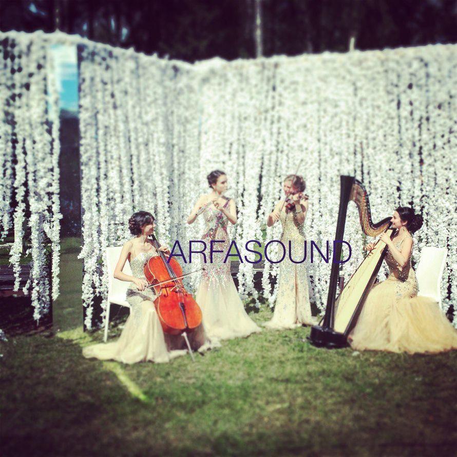 Артисты и шоу на свадьбу