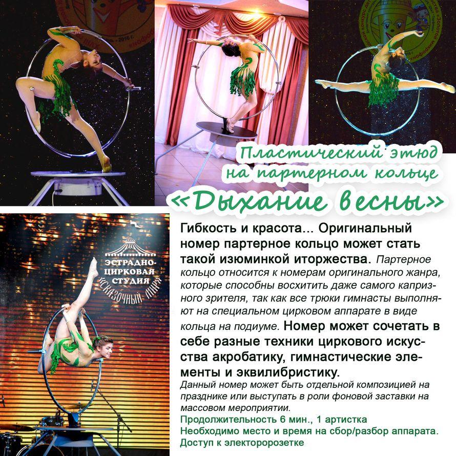 """Фото 16087872 в коллекции Портфолио - Эстрадно-цирковая студия """"Сказочный мир"""""""