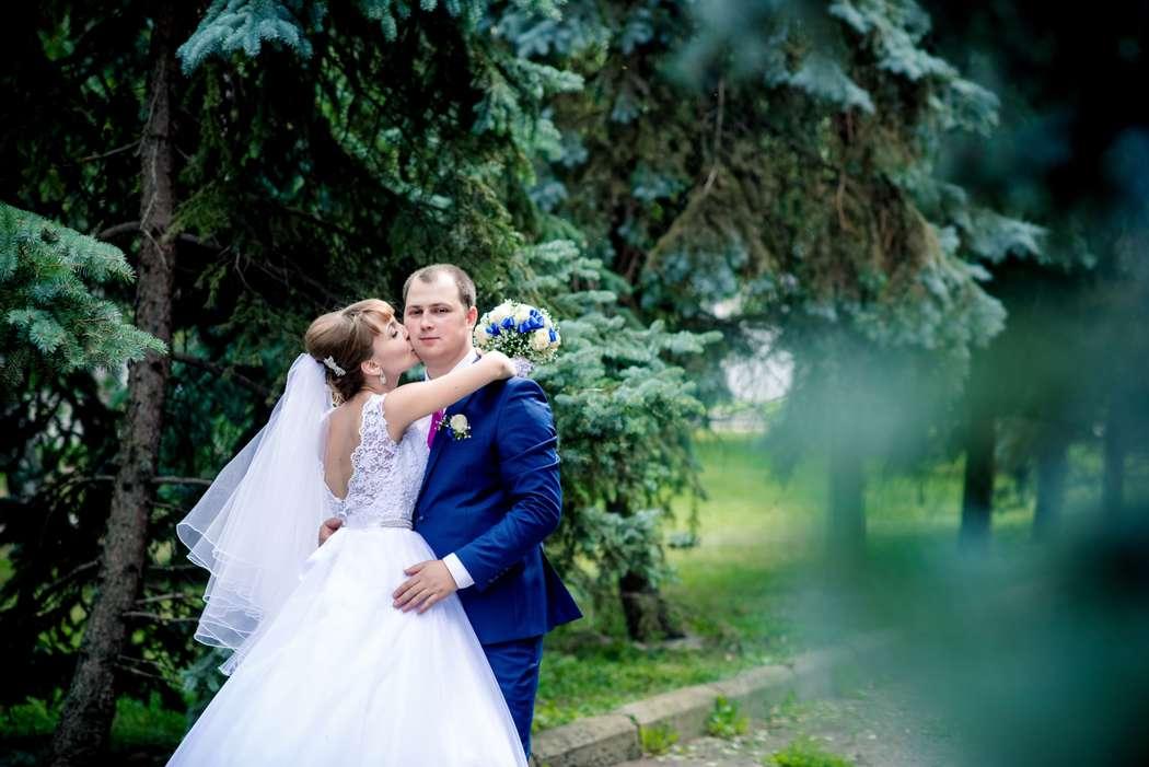 Фото 6644056 в коллекции Портфолио - Фотограф Юлия Старкова