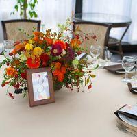 Теплая и яркая свадебная история золотой осенью. Оформление банкета