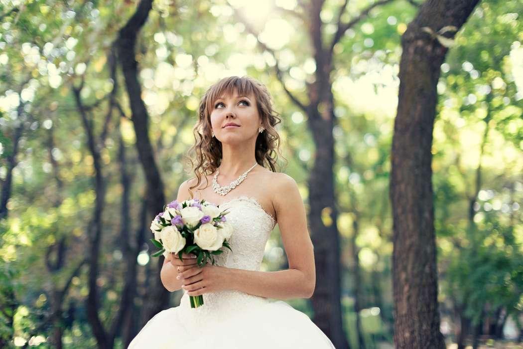 лучшие фотографы саратова летнего черенкования используются
