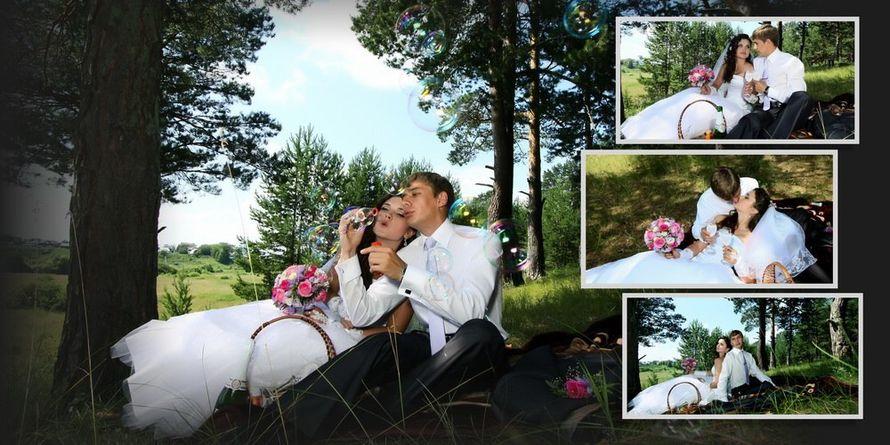 Фото 16557528 в коллекции подборка фотографий - Ильин Виктор фотограф