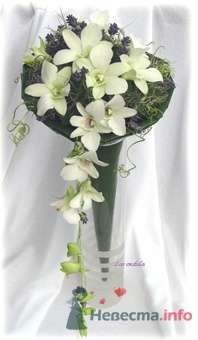 Фото 25312 в коллекции Flowers - YuBinLi