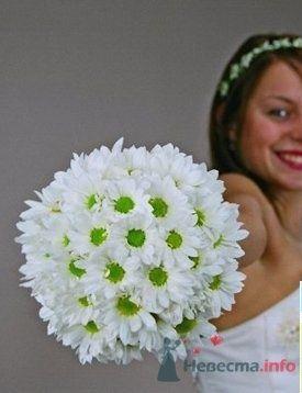 Фото 25314 в коллекции Flowers - YuBinLi
