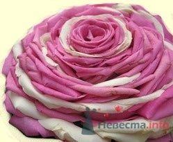Фото 25318 в коллекции Flowers - YuBinLi