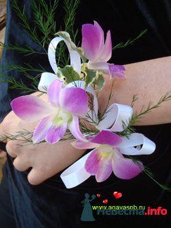Фото 123464 в коллекции Flowers - ARTYFAKT