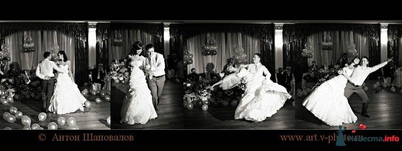 Фото 107678 в коллекции Свадебная фотокнига Владимира и Ирины. 12.02.2010 - Свадебные фотографы StoryOfMoments