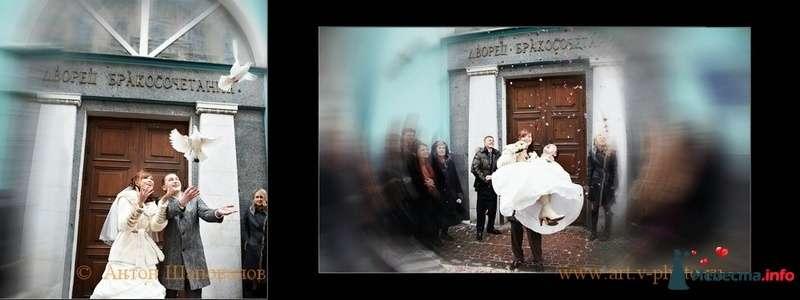 Фото 107698 в коллекции Свадебная фотокнига Владимира и Ирины. 12.02.2010 - Свадебные фотографы StoryOfMoments