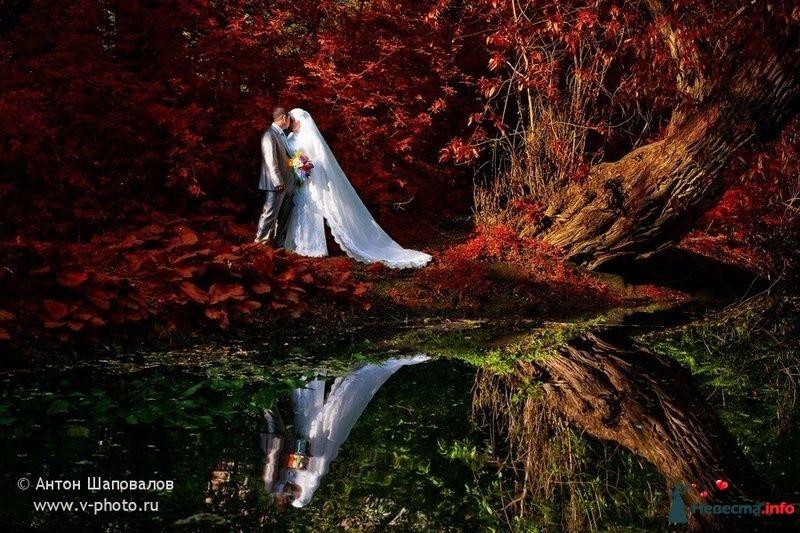 Фото 108589 в коллекции Ольга (ribca_saghira) и Абдельхади. 13 мая 2010. - Свадебные фотографы StoryOfMoments