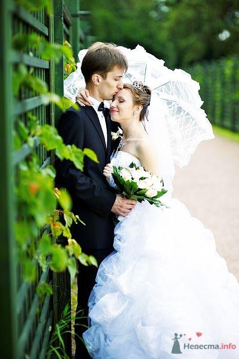 Фото 46266 в коллекции Свадьба Насти и Кости 25.07.09