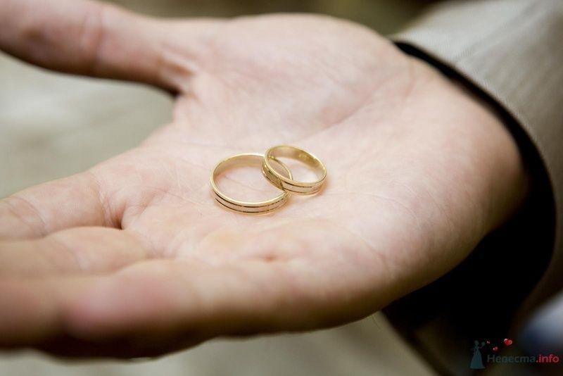 Золотые кольца, выполненные в классическом стиле, в руке молодого.