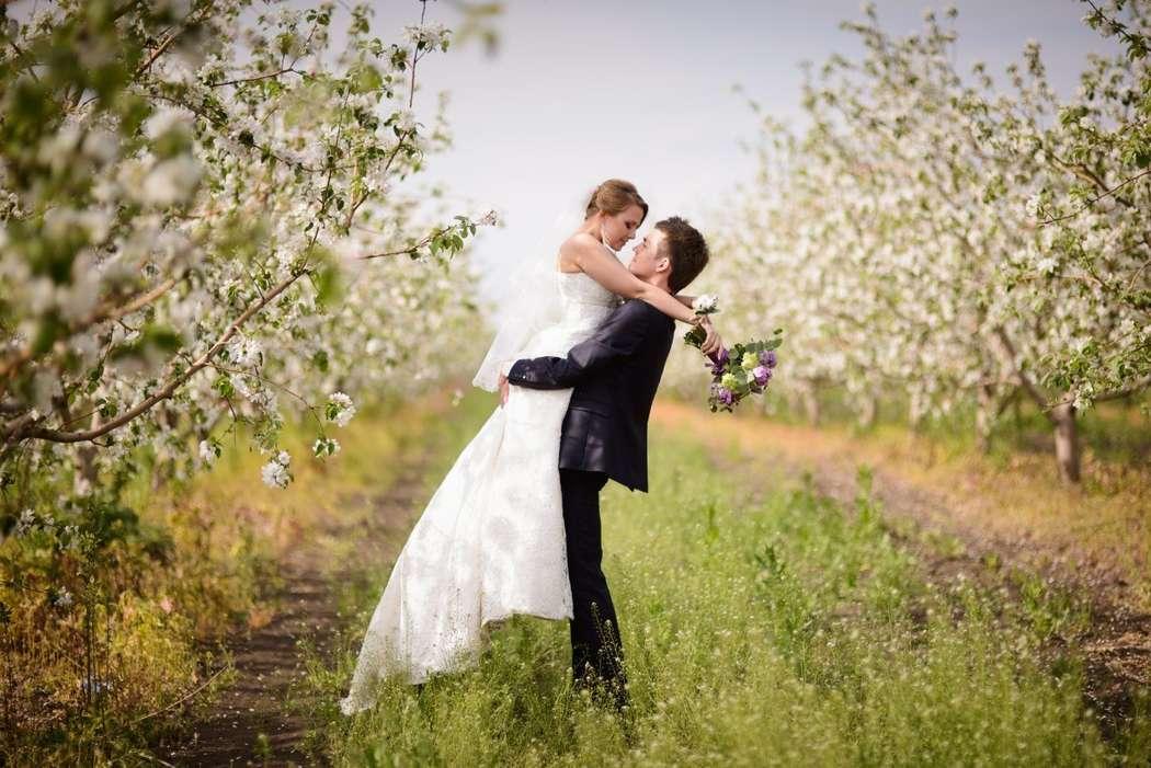 Фото 3965835 в коллекции Портфолио - Почти  Женаты - организация и оформление свадьбы