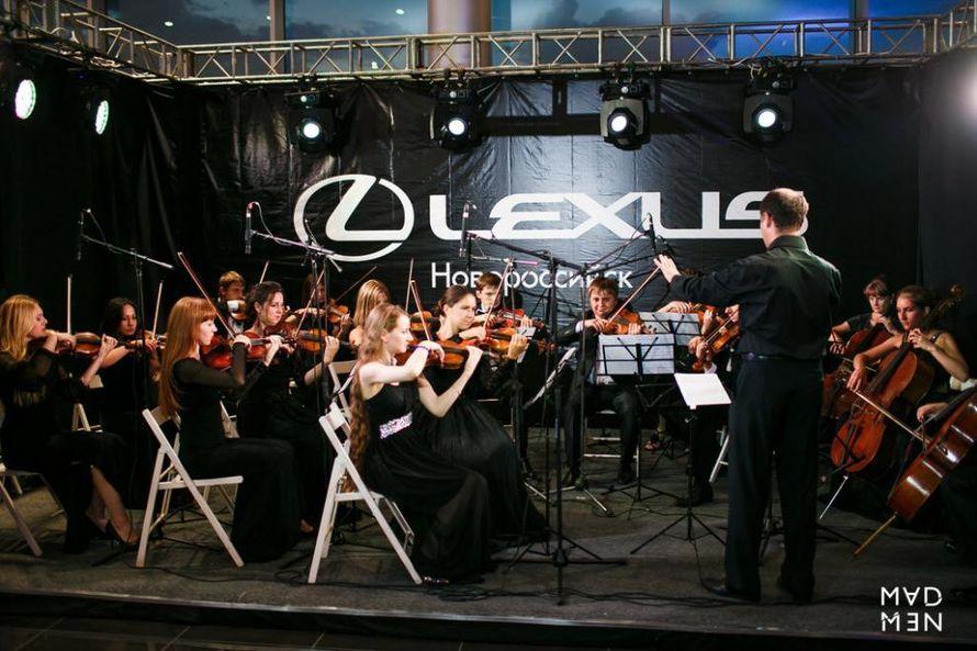 """Выступление струнного оркестра """"Luxor"""""""