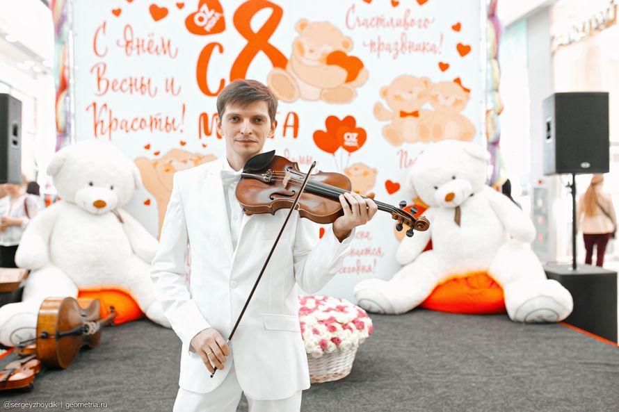 Выступление скрипача