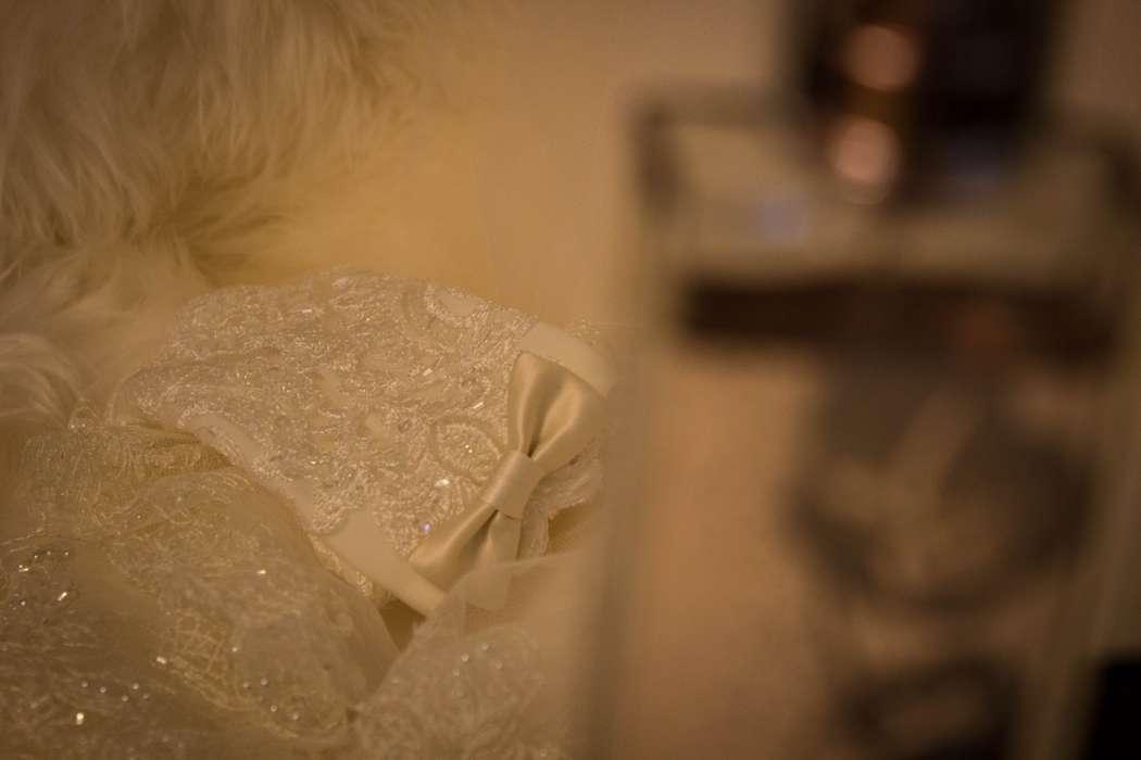 """Фото 2819883 в коллекции Мои фотографии - Фотограф, Дом невесты """"Шикарная Свадьба"""""""