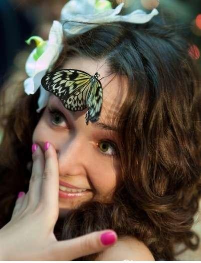 """Фото 2124558 в коллекции Мои фотографии - """"Тропические живые бабочки"""" - свадебное шоу"""