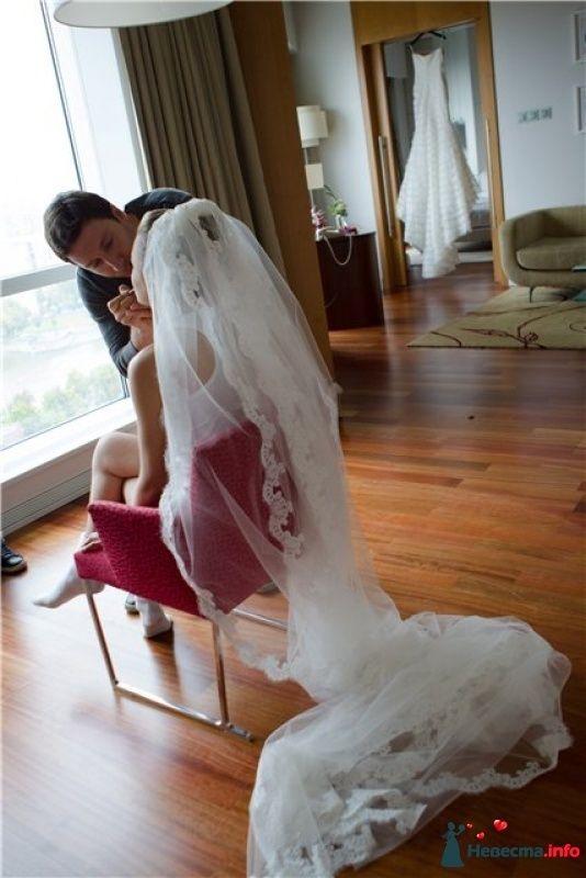 Невеста сосала на свадьбе «Профстройреконструкция»