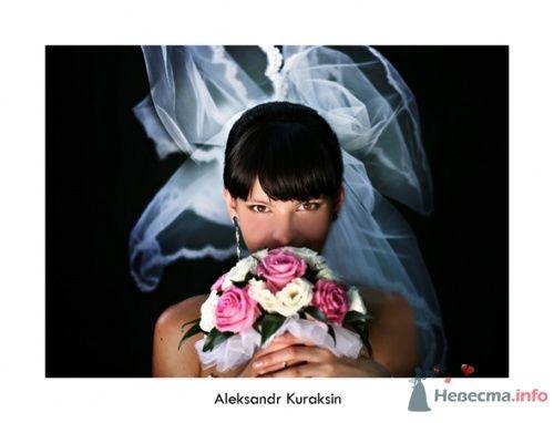 Фото 14474 в коллекции свадебные фотографии - Kuraksin Photo - фотоуслуги
