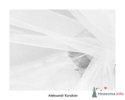 Фото 14531 в коллекции свадебные фотографии - Kuraksin Photo - фотоуслуги
