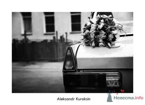 Фото 14537 в коллекции свадебные фотографии - Kuraksin Photo - фотоуслуги