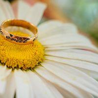 Свадьба Ани и Коли