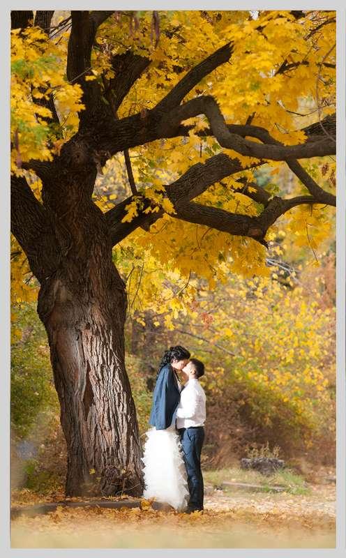 Фото 2199060 в коллекции Мои фотографии - TVC - свадебное видео