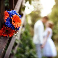 Букет невесты из оранжевых гербер и синих хризантем