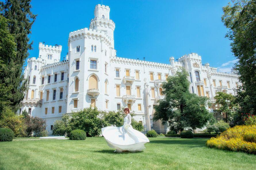 """Свадьба в замке Глубока над Влтавой - фото 12851484 """"Luxe svadba"""" - свадьба в Чехии"""