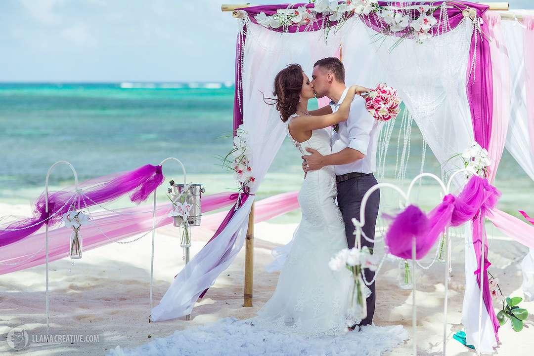 всем облике идеальная свадьба картинки будет дерева