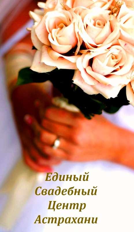 Фото 2301514 в коллекции Мои фотографии - Единый Свадебный Центр - организация свадьбы