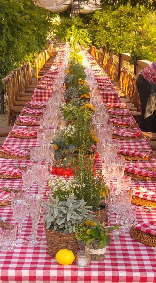 """Банкет в стиле """"Пик-ник"""" - фото 17105634 Italia Viaggi - организация свадеб"""