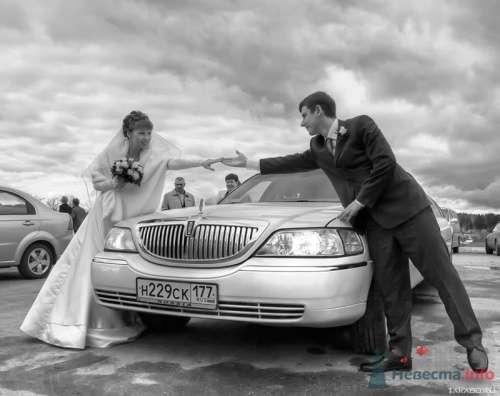 Фотография жениха и невесты с автомобилем. - фото 296 Алексей Шутько