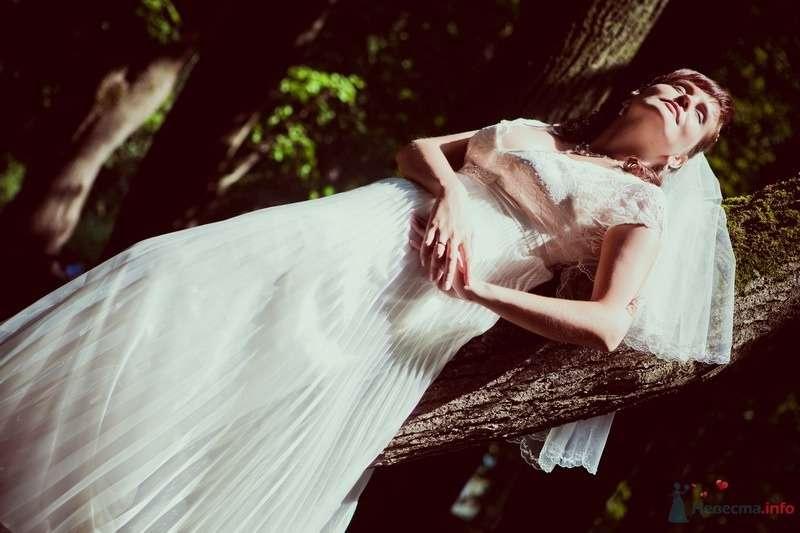 Невеста в белом длинном платье лежит на дереве - фото 48918 Valery