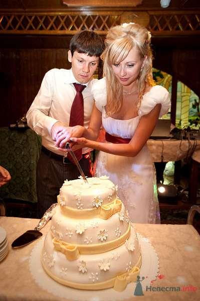 """и тортик в ромашку - фото 73414 Funday - свадебное агентство парка """"Сокольники"""""""