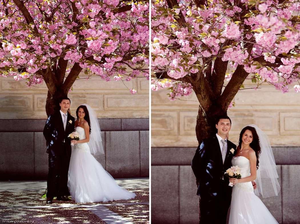 Фото 2377136 в коллекции Wedding Story - Свадебный фотограф Игорь Павлов