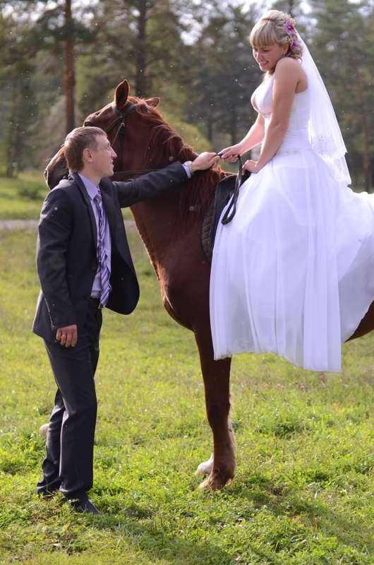 Фотография невесты на лошади. - фото 2410169 Фотограф Светлана Герасименко