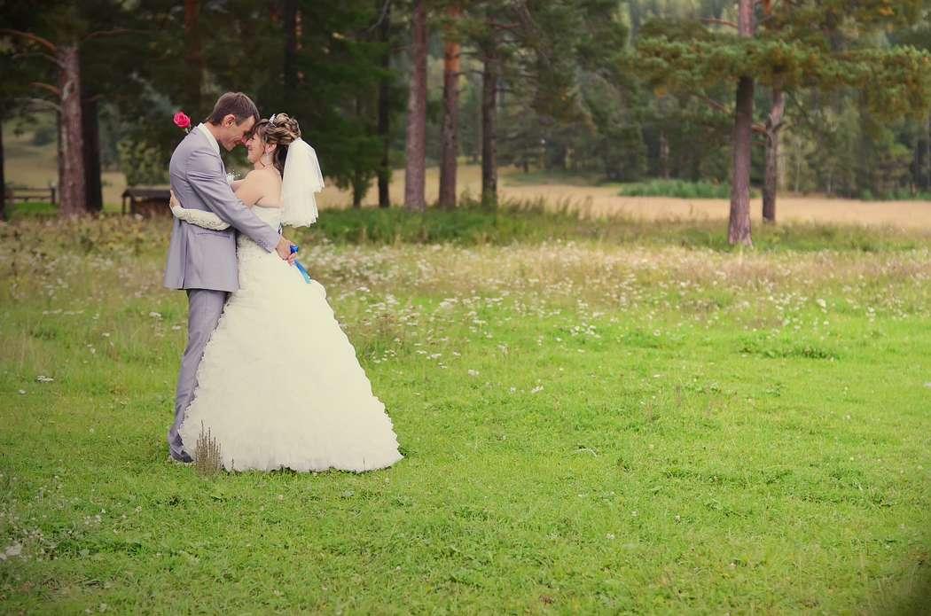 Свадебная прогулка на природе в лесу. - фото 2410207 Фотограф Светлана Герасименко