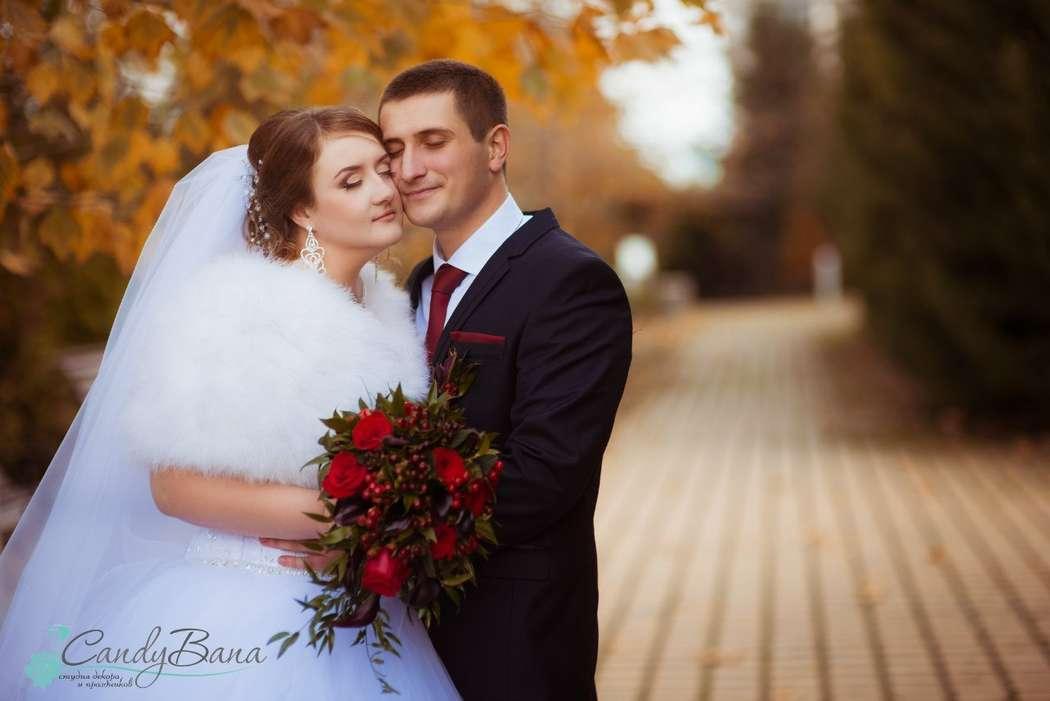 Виталий и Ольга, ноябрь 2015 г. Любовь не знает границ... - фото 9759504 Студия декора и праздника CandyBana