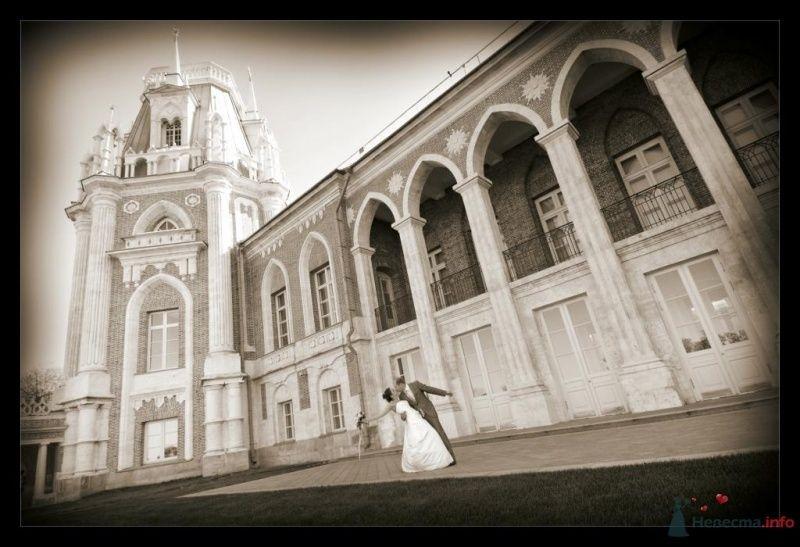 Фото 60442 в коллекции Мои фотографии - Львена
