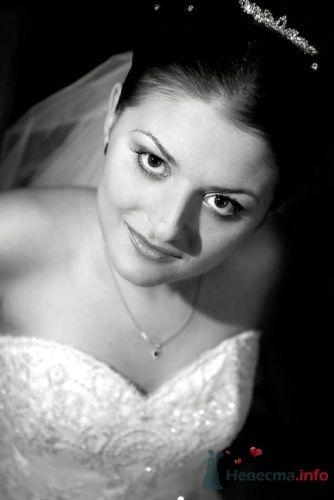 Фото 15872 в коллекции фотоработы Виктории Вяльченковой - Свадебный фотограф - Виктория Вяльченкова