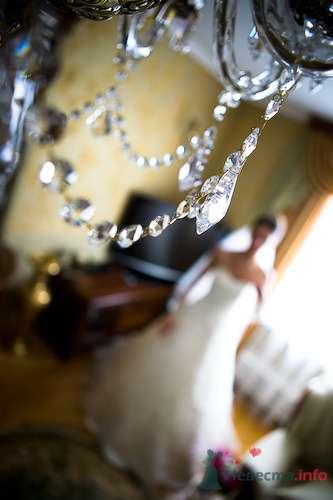 Фото 70917 в коллекции фотоработы Виктории Вяльченковой - Свадебный фотограф - Виктория Вяльченкова