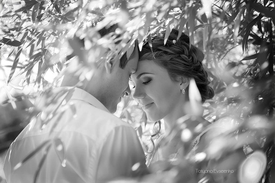 нежность... - фото 3243615 Татьяна Евсеенко - фотостудия Танго