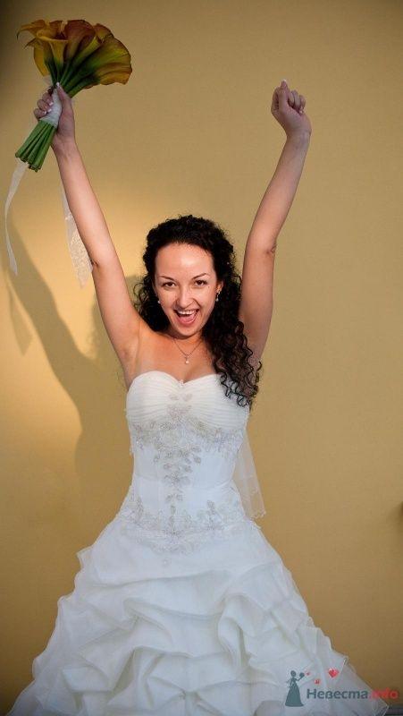 Фото 46649 в коллекции наша свадьба - Pantera25