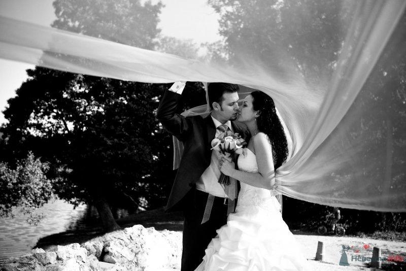 Жених и невеста стоят, прислонившись друг к другу, в парке - фото 46656 Pantera25