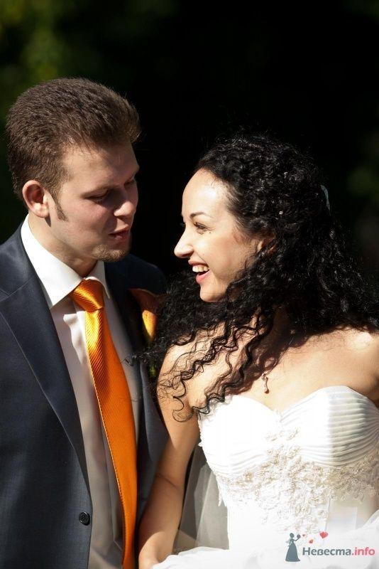 Фото 46657 в коллекции наша свадьба