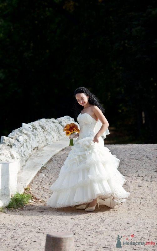 Фото 46674 в коллекции наша свадьба - Pantera25